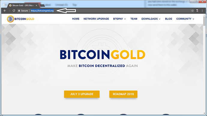 bitcoin%20gold%20website